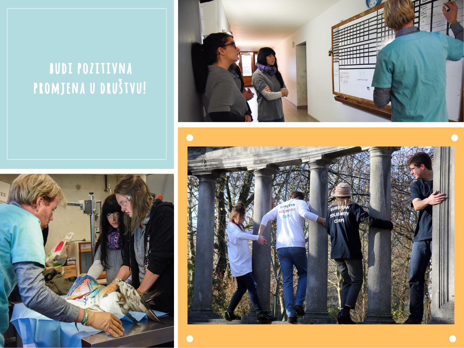 Imam ideju! – online prezentacija Projekata solidarnosti i kako ih prijaviti