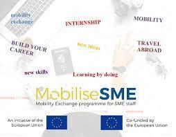 MobiliseSME program - Prilika za usavršavanje u inozemstvu